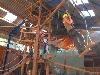 bungalows bij hogenboom vakantieparken in drenthe