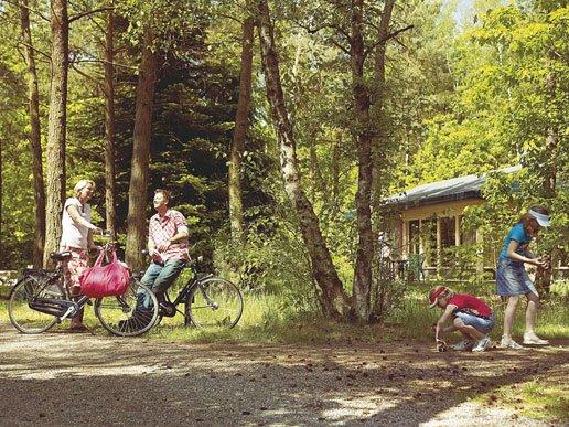 vakantiebungalows veluwe heideheuvel bungalowpark