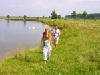 Limburg maaspark boschmolenplas vakantiebungalows