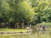 vakantieparken limburg landall