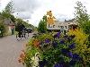 bungalowpark hogenboom vakantieparken in noord brabant