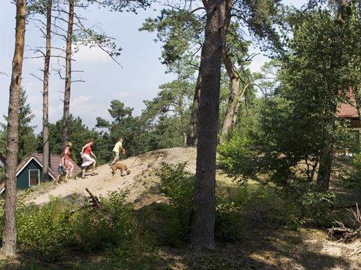 natuurrijk bungalowpark veluwe coldenhove
