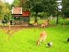 Kinderboerderij op bungalowpark groningen Weddermeer