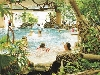 Brabants bungalowpark landal vennebos